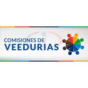 Comisiones de Veedurías